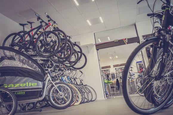 Auswahl Fahrrad